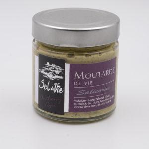Moutardes aromatisées